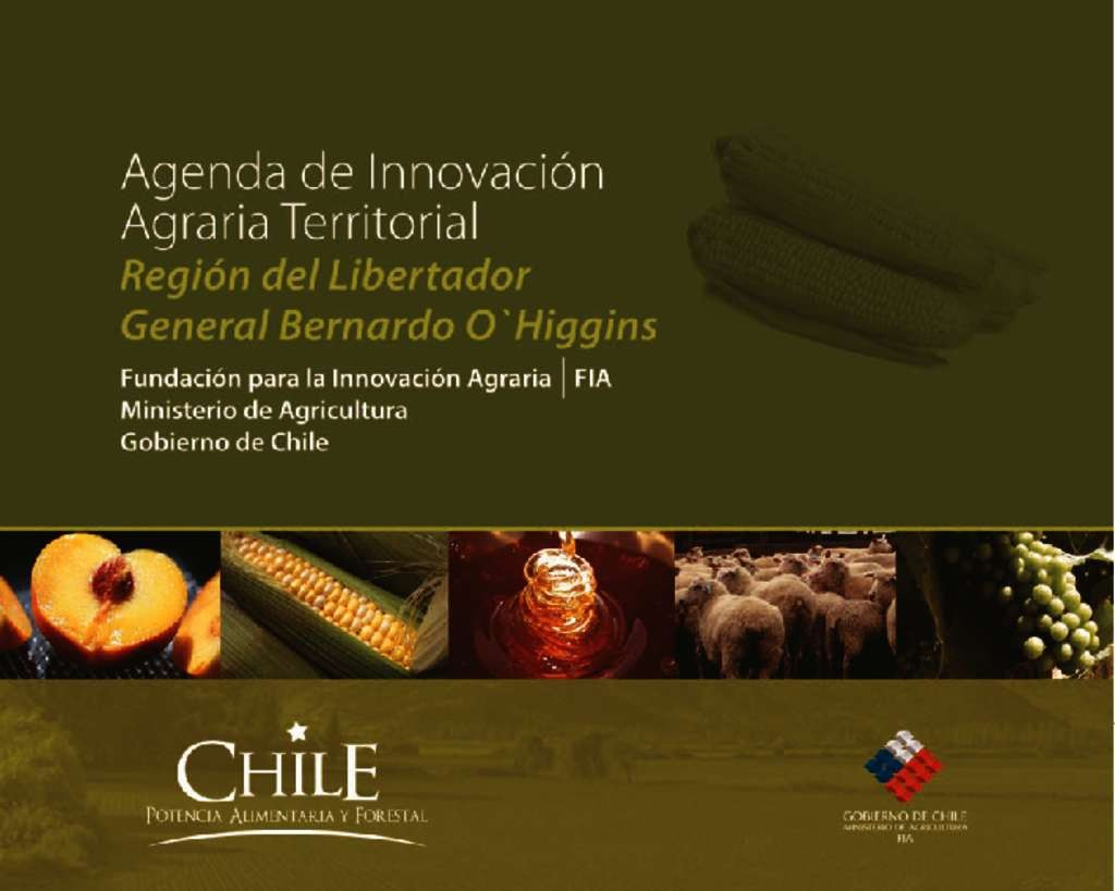 thumbnail of Agenda O'Higgins